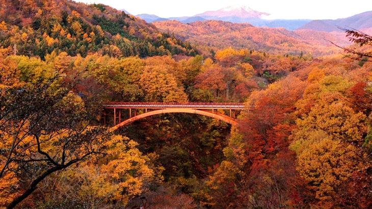 紅葉の雪割橋