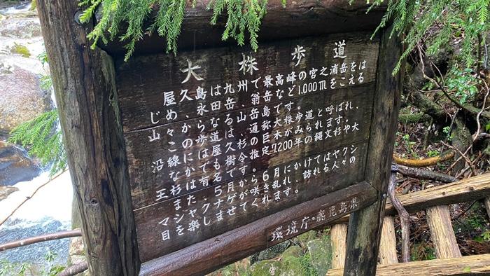 屋久島 大株歩道入口