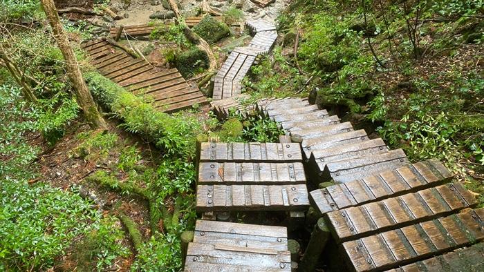 屋久島 階段